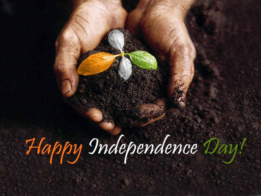 independence day essay in english hindi daily roabox independence day essay in english hindi