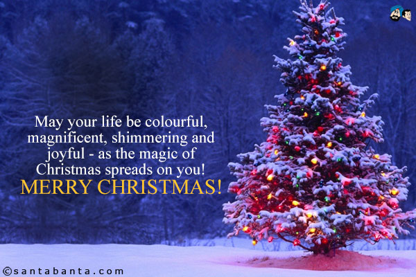 merry christmas wishes sms