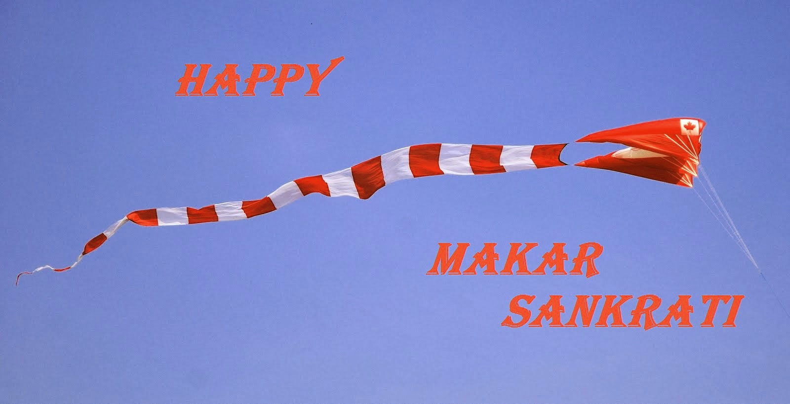 uttarayan festival essay The festival of makar sankranti is one of the main festivals of hindu religion,  which is celebrated on the ascension of the sun the special.