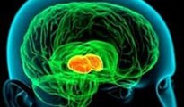 Emotional Expressions can Alter Brain's Creativity