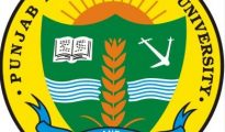Punjab Agricultural University, PAU Recruitment 2016 for the post of Research Fellow