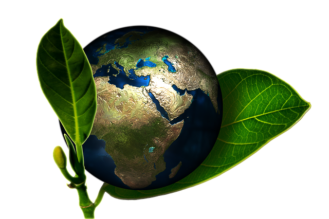 How Your Business Could Be Harming The Earth