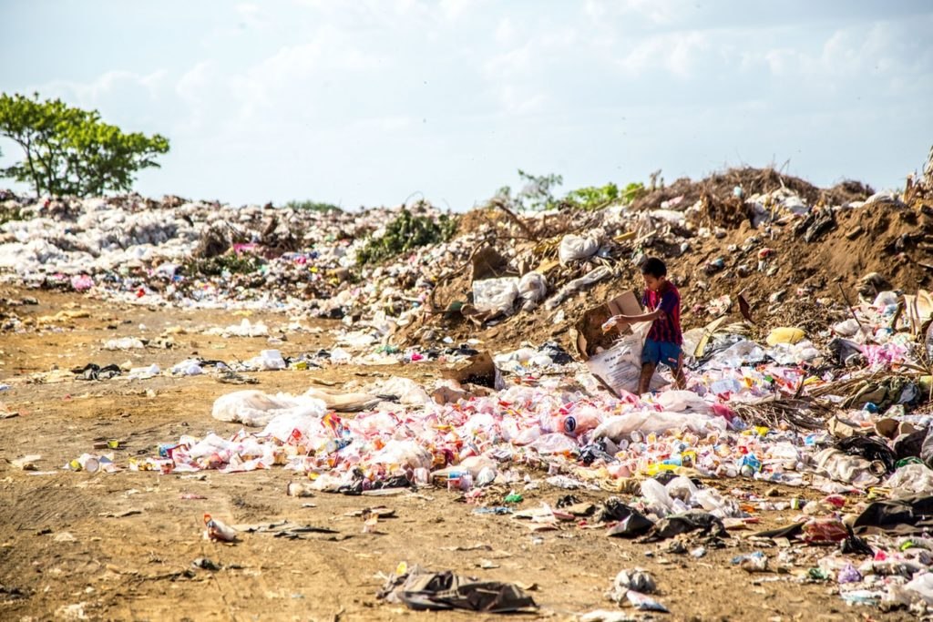 Cutting Your Household Waste