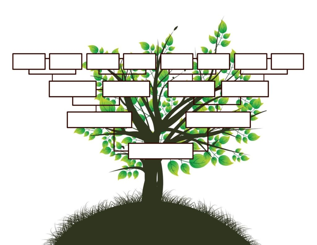 employee tree template - free editable family tree template daily roabox daily