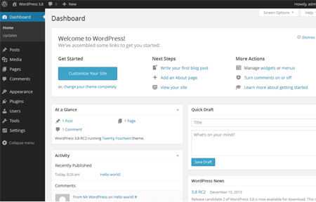 Can you use WordPress startup company's website?