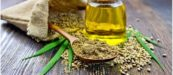 Hemp Oil uses and effects